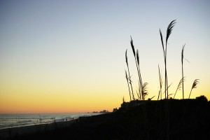 Atlantic Sunset @ Myrtle Beach by 1North