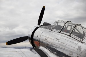 P-53 Nose by Wallshazam