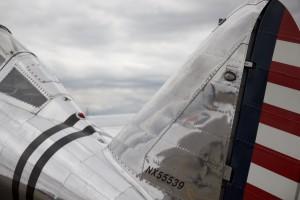 P-35 Back & Tail by Wallshazam