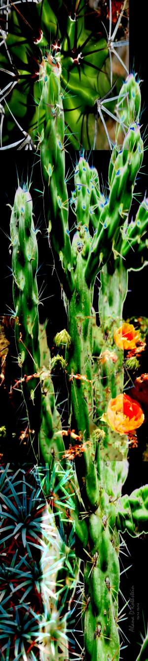 Neon Black Velvet Cactus 1 by Alana Rothstein