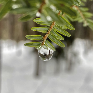 a drop of hope by Amber Vee Photography