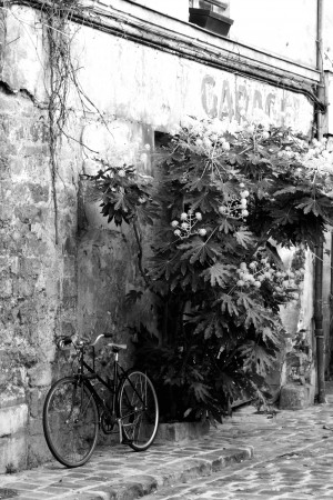 Bike in Passage by Bill Osuch
