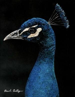 Peacock Portrait by Brinda Chellappan