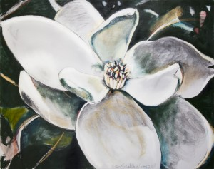 Louisiana Magnolia with Her Heart Open by Caroline Youngblood