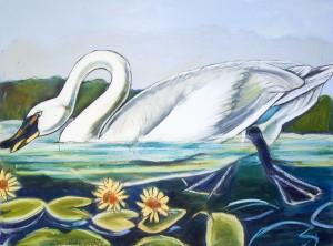 Louisiana Tundra Swan by Caroline Youngblood