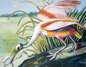 Louisiana Roseate Spoonbill in the Marsh by Caroline Youngblood