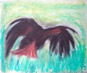 Hawk by Crystal Wacoche
