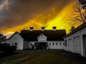 Barn - Sky  by DH Photo Concepts