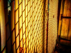 Lighted Gate by DH Photo Concepts
