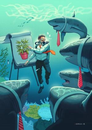 Shark Tank by Daniel Garcia Art