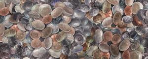 Rock And Seashell Collection Watercolor Painting Beach Rocks IV by Irina Sztukowski