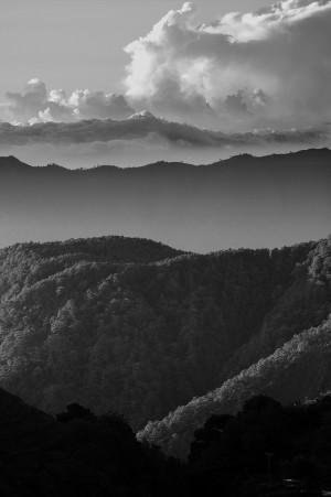 Layers of grey by Ji