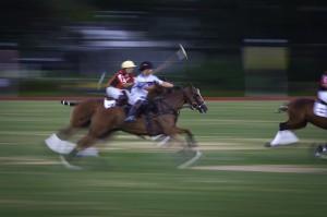 Polo race by Ji