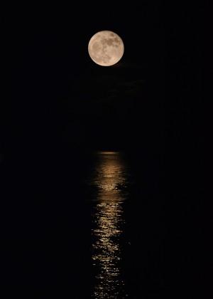 Holiday Magic - Lunar Art by Jordan Blackstone by Jordan Blackstone