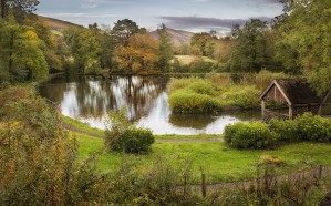 Craig-y-Nos Country park by Leighton Collins