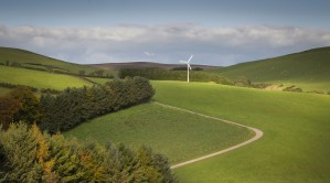 A solitary wind turbine by Leighton Collins