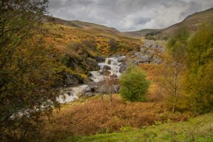 Elan valley landscape by Leighton Collins