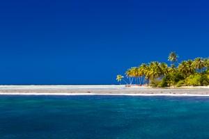 Tropical beach background by Levente Bodo