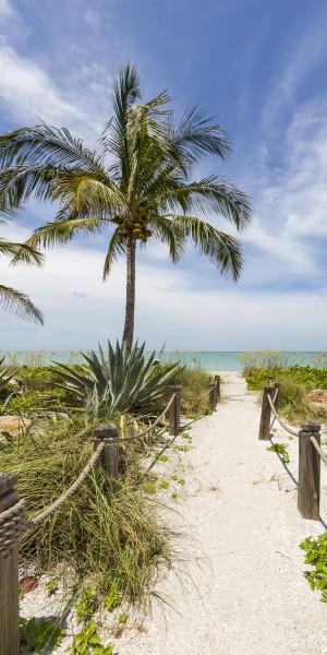 Path to the beach | Panorama by Melanie Viola