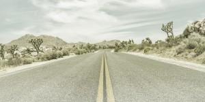 Highway & Joshua Trees | Vintage Panorama by Melanie Viola