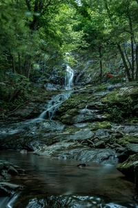Tranquility 2   Jones Falls Shenadoah National Park  VA by Michael Lopez