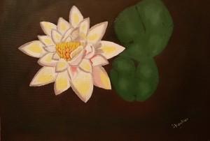 Lotus by Shankar Kashyap