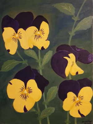 Yellow and purple pansies by Shankar Kashyap