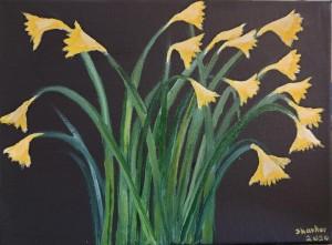 daffodils by Shankar Kashyap