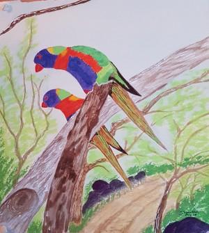 parakeets by Shankar Kashyap