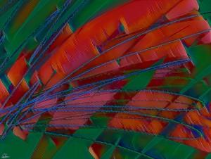 Strawberry Rhubarb Palm Dreams by Soul Sparkles