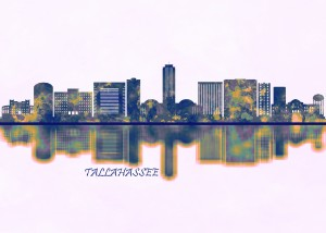 Tallahassee Skyline by Towseef Dar