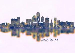 Tallahassee USA Skyline by Towseef Dar