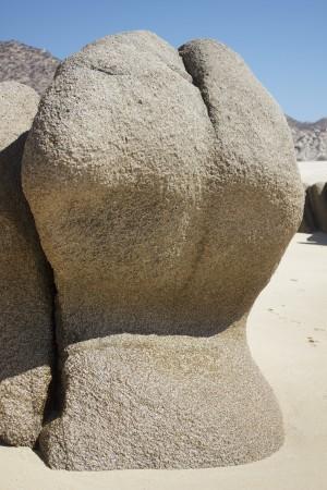 Sexy Rock by Wallshazam