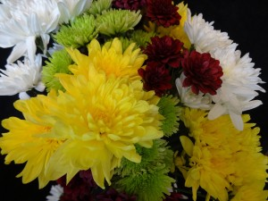 Daisies and Mums Bouquet 2 by by Tara