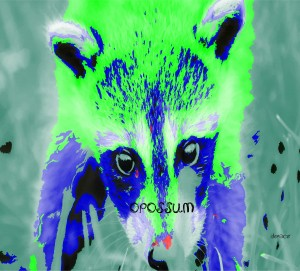 abstract Opossum by dePace-