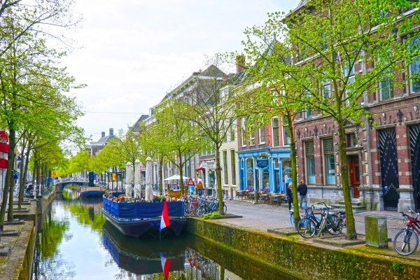 A Dream of the Netherlands 3 of 4 Digital Download