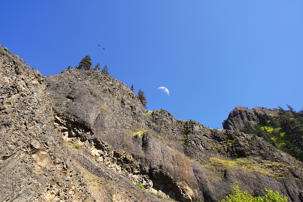 The Gorge Oregon Digital Download