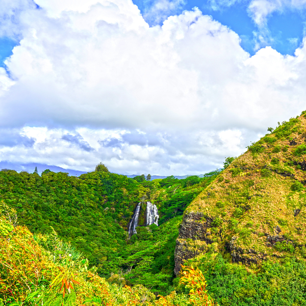 The Falls at the Mountain Overlook on Kauai Square Digital Download