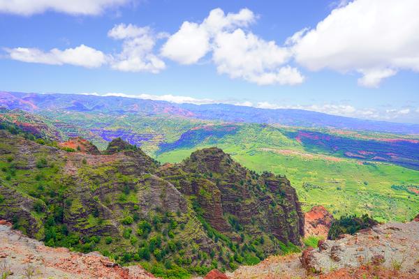Waimea Canyon Area in the Puu Ka Pele Forest Reserve on the Island of Kauai Hawaii Digital Download