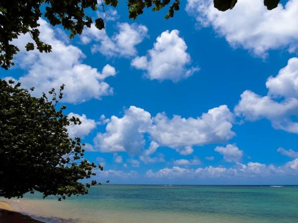 Turquoise Waters & Blue Skies Digital Download