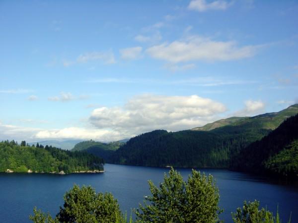 Pacific Northwest Splendor Digital Download