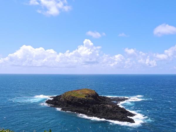 Secret Island Digital Download