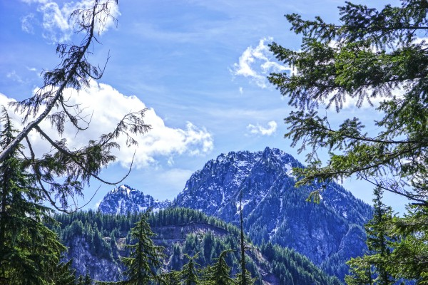 The Cascades Digital Download