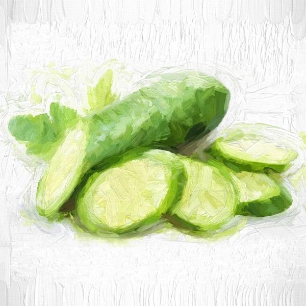 Cucumber by A WYN CHANCE