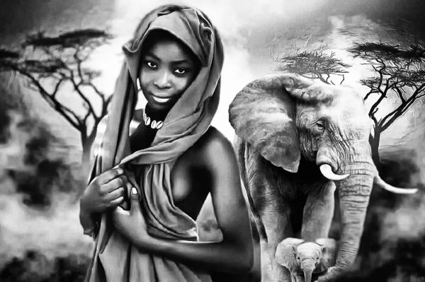 africa 2 by Alain Beaudouard