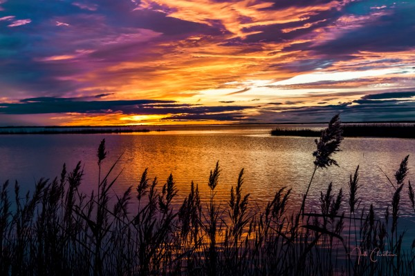Coucher Soleil Scamandre by Alle Christian