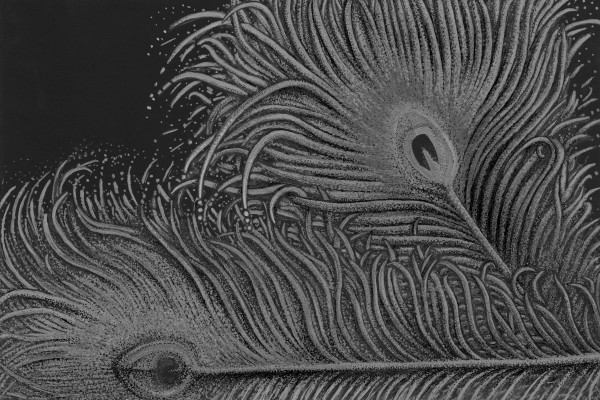 Full Bloom Greyscale by Altered States of Gravity