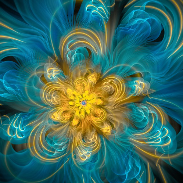 Flower In Blue by Amy Gillespie