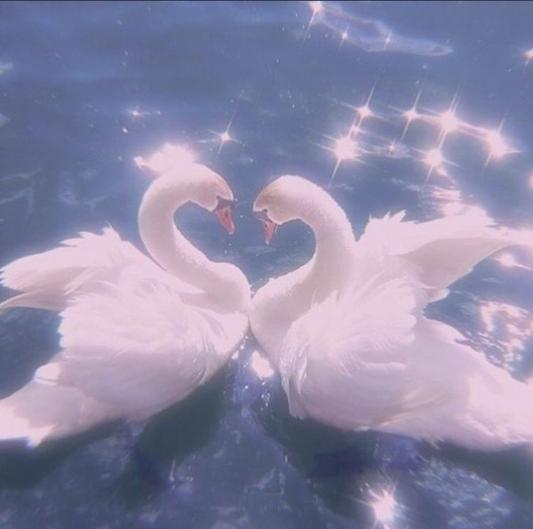 imgonline com ua resizeMPXMvi2XowAdEHb by Angels