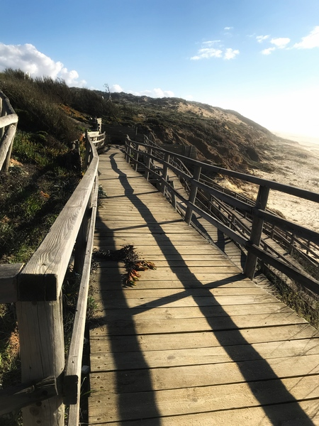 A wooden path on the Atlantic coast in Portugal by Anita Varga